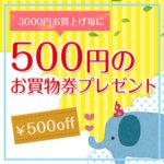 3000円お買い上げ毎に500円のお買物券プレゼント