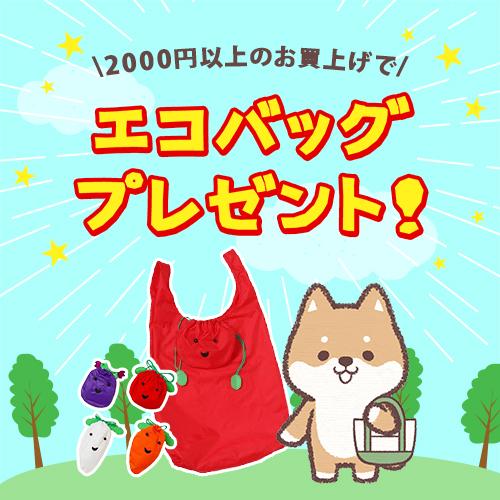 2000円以上のお買上げでエコバッグプレゼント!