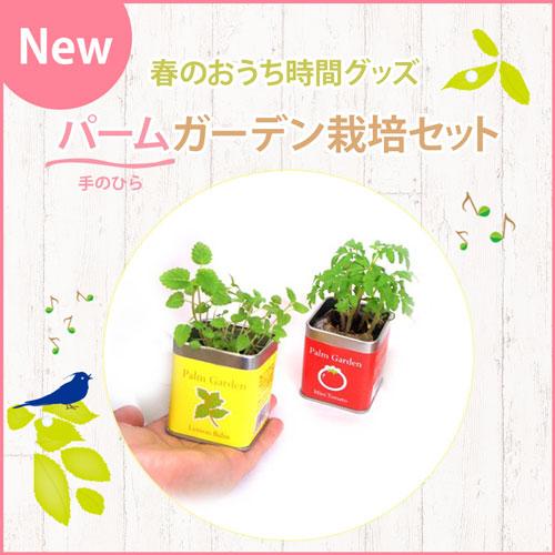 NEW 春のおうち時間グッズ パーム(手のひら)ガーデン栽培セット