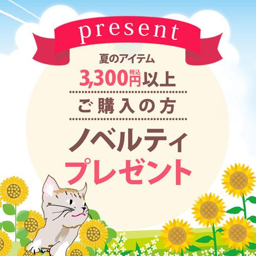 夏のアイテム税込3300円以上ご購入の方ノベルティプレゼント♪