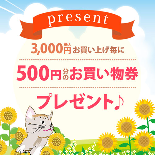 3000円お買上げ毎に500円分のお買い物券プレゼント♪